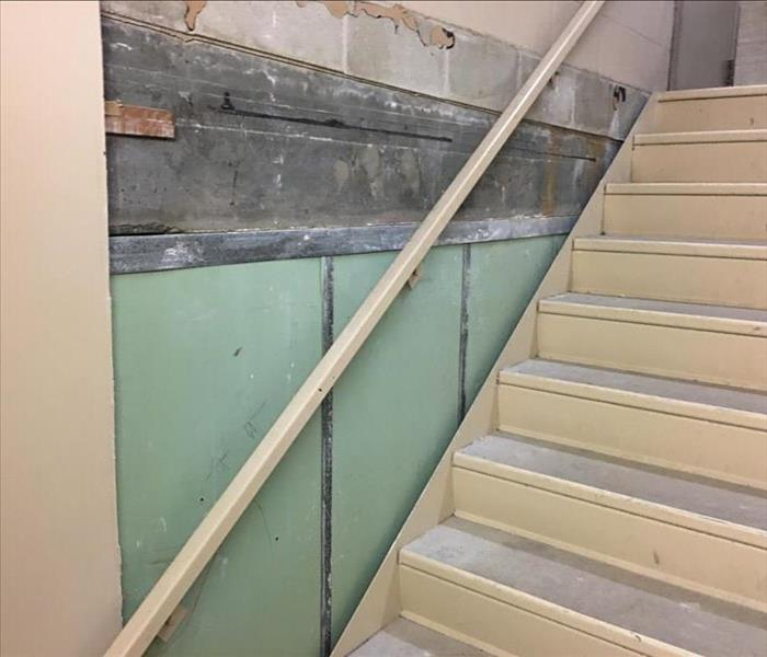 Mold in Kirkland Condominium Stairwell  After