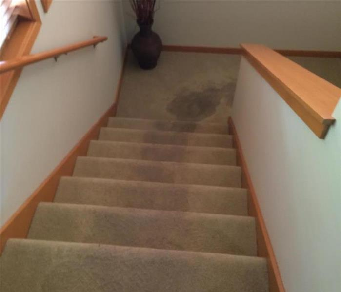 Toilet Overflow Throughout Bothell Home  Before