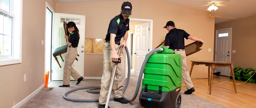 Lynnwood, WA cleaning services